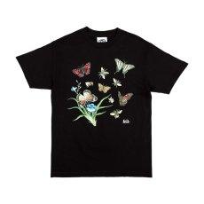 画像1: Felt(フェルト) Butterfly Bee S/S Tee Black Tシャツ (1)