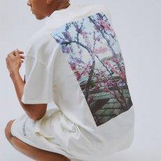 画像1: FOG Fear Of God ( エフオージー フィア オブ ゴッド ) Essentials Boxy Photo Series S/S logo Tee Short Sleeve T-Shirts Tシャツ エッセンシャルズ  (1)