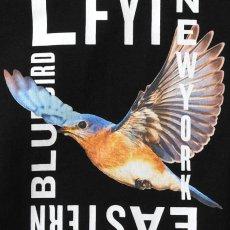 画像5: Eastern Bluebird S/S T-Shirt Tee 半袖 Tシャツ (5)