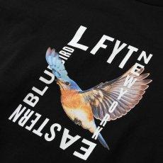 画像4: Eastern Bluebird S/S T-Shirt Tee 半袖 Tシャツ (4)